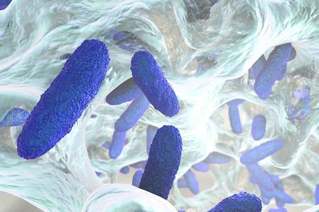 Gi Microbiome Test Food Sensitivity Testing