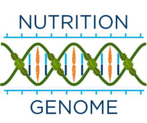 Nutrition Genome