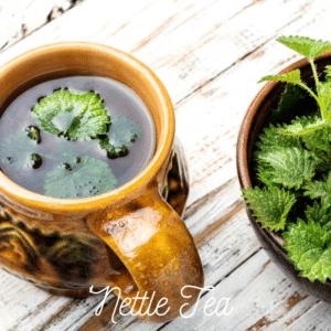 Nettle Tea Powerful Antihistamine