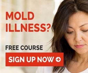 Mold Detox FREE Mini Course
